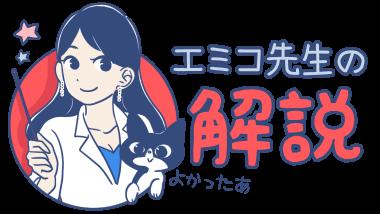 エミコ先生の解説